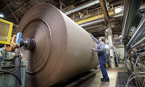 Paper exports to China increased sharply as of August 2018